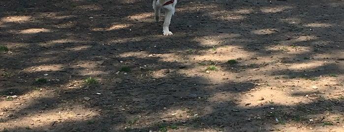 Manhattan Beach Dog Run is one of My Good Dog NYC: NYC Dog Runs.