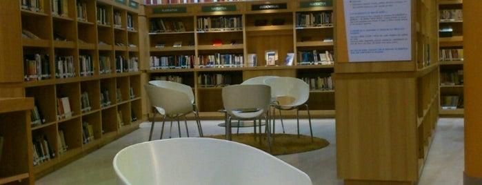 Biblioteca Viva is one of Lugares guardados de Ignacia.