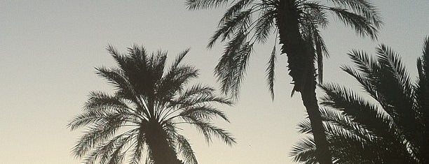 Coachella Valley is one of Palm Springs : To Do.