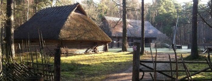 Eesti Vabaõhumuuseum is one of Beautiful places for photowalks.