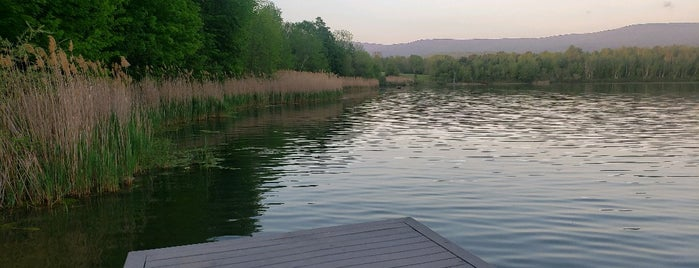 Lake Paran is one of Tempat yang Disukai Joey.