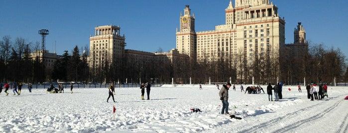 Tempat yang Disukai Sveta Komarova
