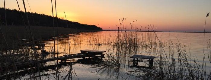 озеро Лиман is one of Veronika : понравившиеся места.