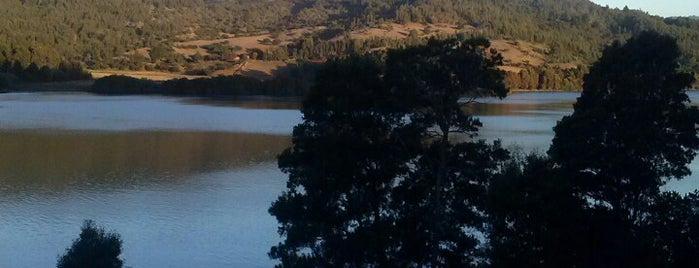 Lago Lleu Lleu is one of Isidoraさんのお気に入りスポット.