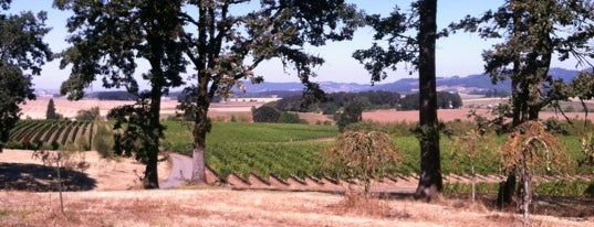 Johan Vineyards is one of Favorites - Willamette Valley.