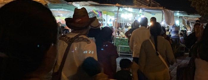Andador Garcia Vigil is one of Oaxaca's Lullaby.