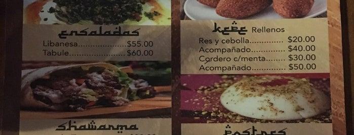 Shawarma comida libanesa is one of Posti che sono piaciuti a Javier.
