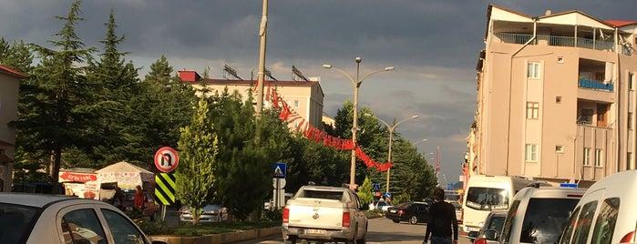 Göksun Çarşı is one of Sedat : понравившиеся места.
