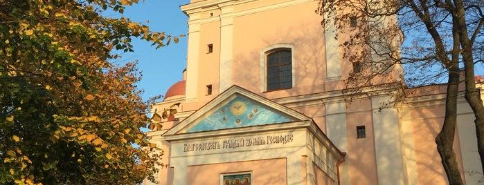Šv. Dvasios ortodoksų vienuolyno katedra is one of Posti che sono piaciuti a Carl.