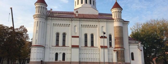 Dievo Motinos Ėmimo į Dangų katedra is one of สถานที่ที่ Carl ถูกใจ.