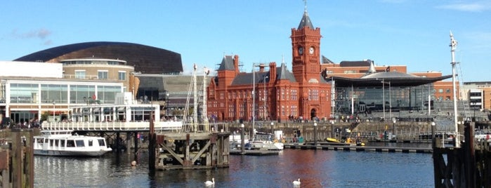 Cardiff Bay is one of Local's Guide to Cardiff.