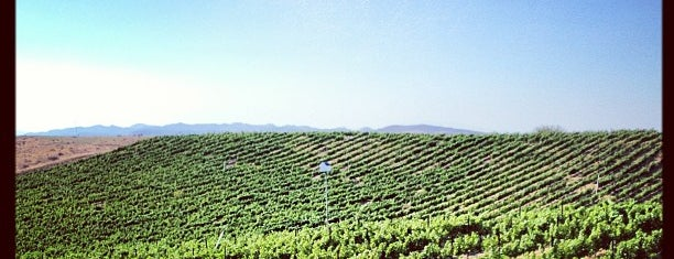Temecula Wine Country is one of San Diego.