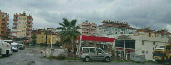 TC Ziraat Bankası is one of Orte, die Yunus gefallen.
