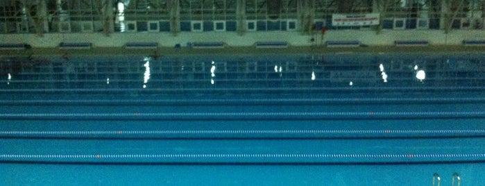 Tekirdağ Olimpik Kapalı Yüzme Havuzu is one of Semin'in Kaydettiği Mekanlar.