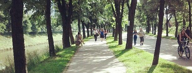 Vilsonovo Šetalište is one of Sevgi: сохраненные места.