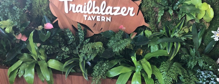 Trailblazer Tavern is one of SF.