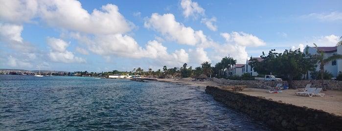 Plaza Resort Bonaire is one of Lugares favoritos de Johan.