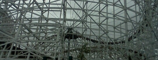 Wicked Cyclone is one of ROLLER COASTERS.