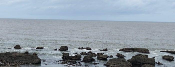 大洗海岸の岩場 is one of 茨城県北ジオパークのジオサイト.