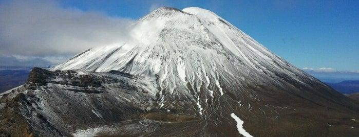 Tongariro Alpine Crossing is one of Ozzie Kiwi.