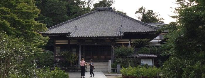 了仙寺 is one of Shimoda.