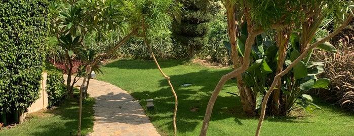 El Safwa Resort is one of Orte, die Olivia gefallen.