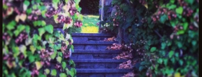 Arnold Arboretum is one of Boston: Fun + Recreation.