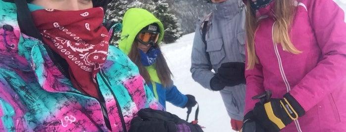 Ski Litmanová is one of สถานที่ที่ Martina ถูกใจ.