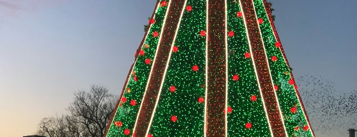 National Christmas Tree is one of Lugares favoritos de Jingyuan.