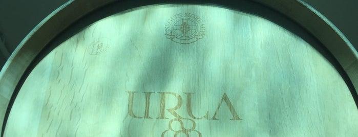 Urla Şarapçılık is one of Locais curtidos por Erman.