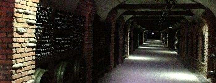 Winery Khareba | მეღვინეობა ხარება is one of Lieux qui ont plu à Анна.
