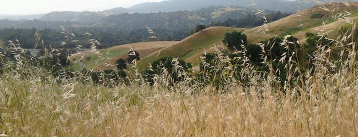Briones Regional Park is one of The Great Outdoors!.