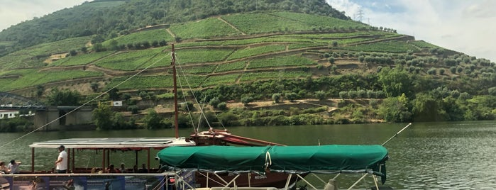 Vale do Douro is one of Portugal Portuguese.