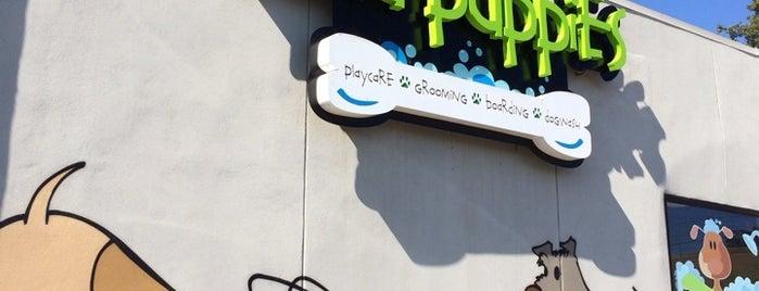 Mud Puppies - Riverside is one of Lugares favoritos de Susie.