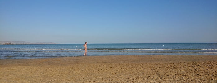 Lido Azzurro is one of Italy 2014.