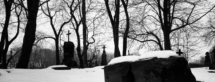 Alexander Nevski Cemetery is one of NORD EST.