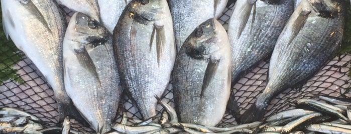 Balıkçılar Çarşısı is one of Favori Mekanlar.