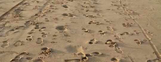Playas de Rosarito is one of Orte, die Lu gefallen.