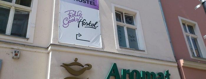 Frolic Goats Hostel is one of Hostels in Poznań.