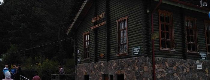 Abant Tabiat Parkı Ziyaretçi Tanıtım Merkezi is one of H'ın Beğendiği Mekanlar.