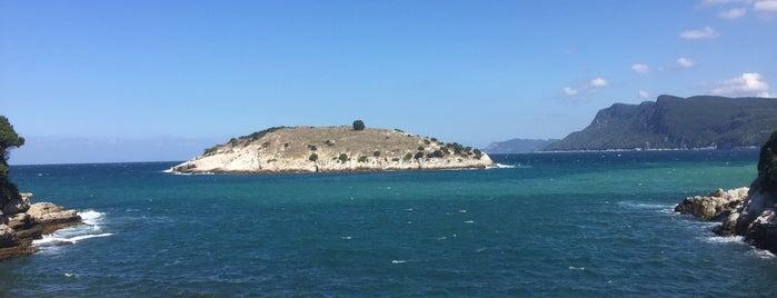 Tavşan Adası is one of Sibel'in Kaydettiği Mekanlar.