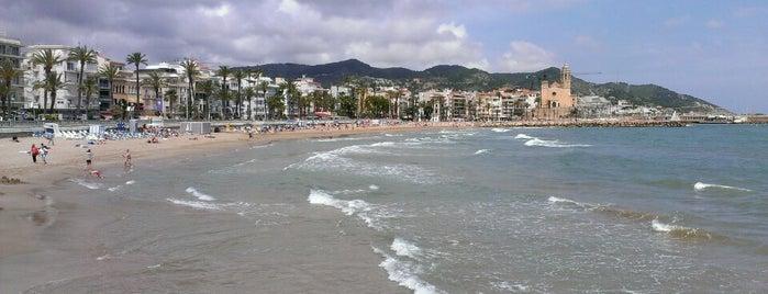 Platja de la Ribera is one of Playas de España: Cataluña.