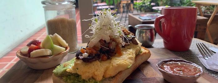 Unión Café Antigua is one of Guatemala.