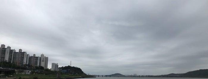 안양천 합수부 is one of Meri 님이 좋아한 장소.