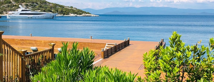 Blue Marlin Ibiza Bodrum is one of Bodrum !!.