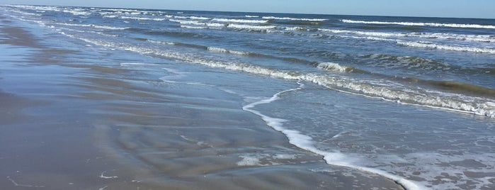 Galveston Island State Park is one of Texas Hillcountry.