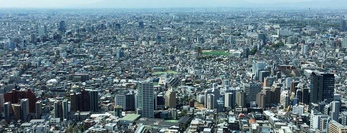 東京都庁 南展望室 is one of Japon.
