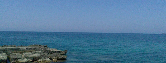 Mare Di Monopoli is one of Puglia, Italia.