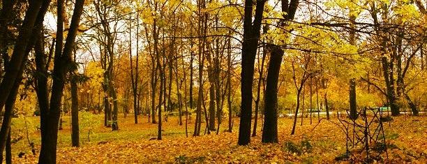 Парк имени Ю. Гагарина is one of Киров, Йошка, Чебы.