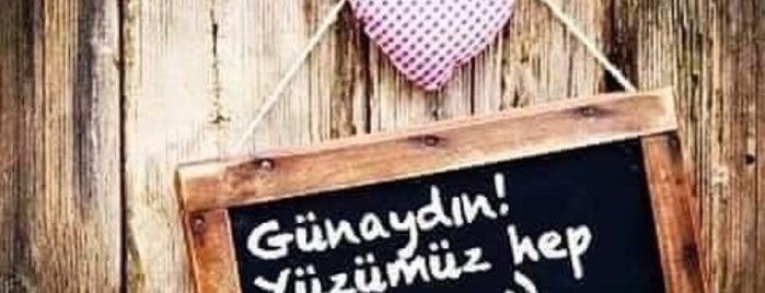 Asude Kahvaltı Bahçesi is one of Sarper'in Beğendiği Mekanlar.